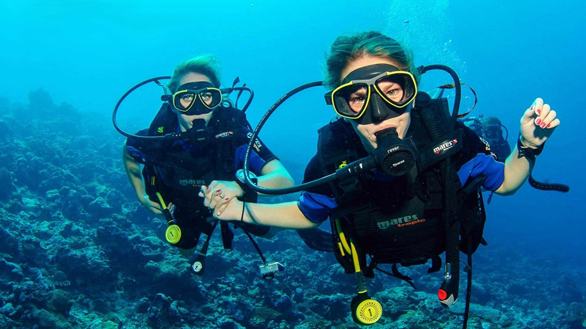Diving certification in thailand padi courses learn to scuba discover scuba xflitez Images