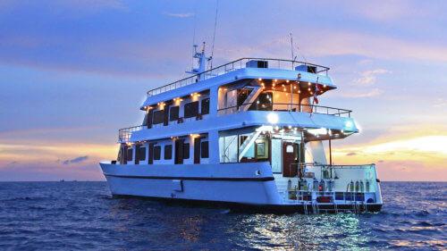 Hallelujah Liveaboard - Diving in the Similan Islands
