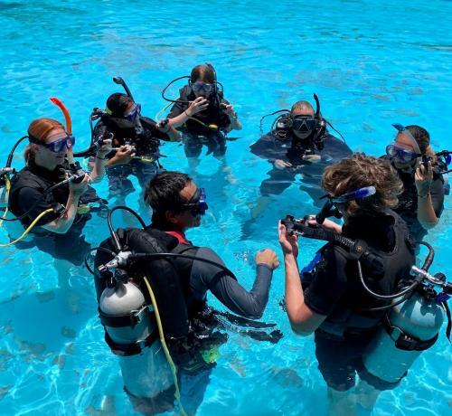 Briefing Pool Training