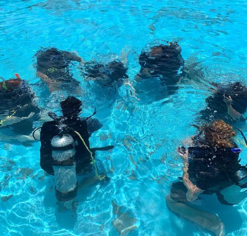 Underwater Pool Training