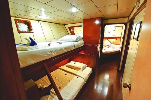 Deep Andaman Queen - Standard Quad Cabin