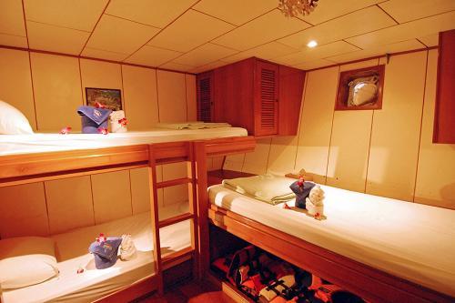 Deep Andaman Queen - Standard Triple Cabin