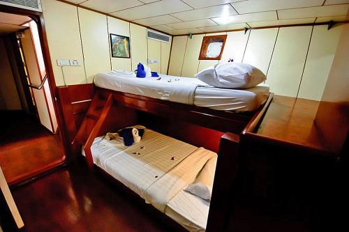 Deep Andaman Queen - Standard Twin Cabin