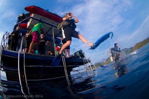 Dolphin Queen - Dive Deck