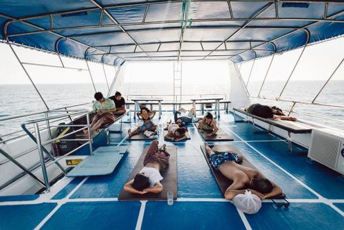 PeterPan Top Deck