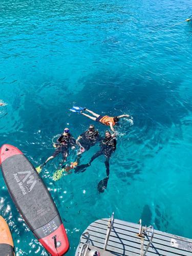 Dive Instructors Sunrise Divers