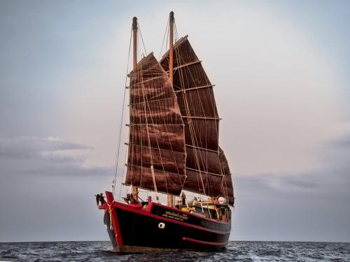 The Junk Sails