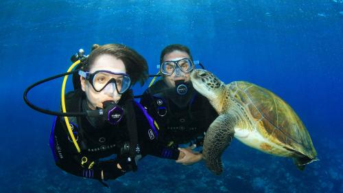 Diving with Aqualung Regulator